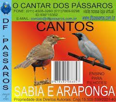 REGENERADA: A araponga de estimação do pres. Zezinho (Canalhus itabigus) disse que agora dedica-se à carreira artística e não tem nada a ver com isso.